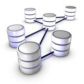 Des bases de données en réseau.