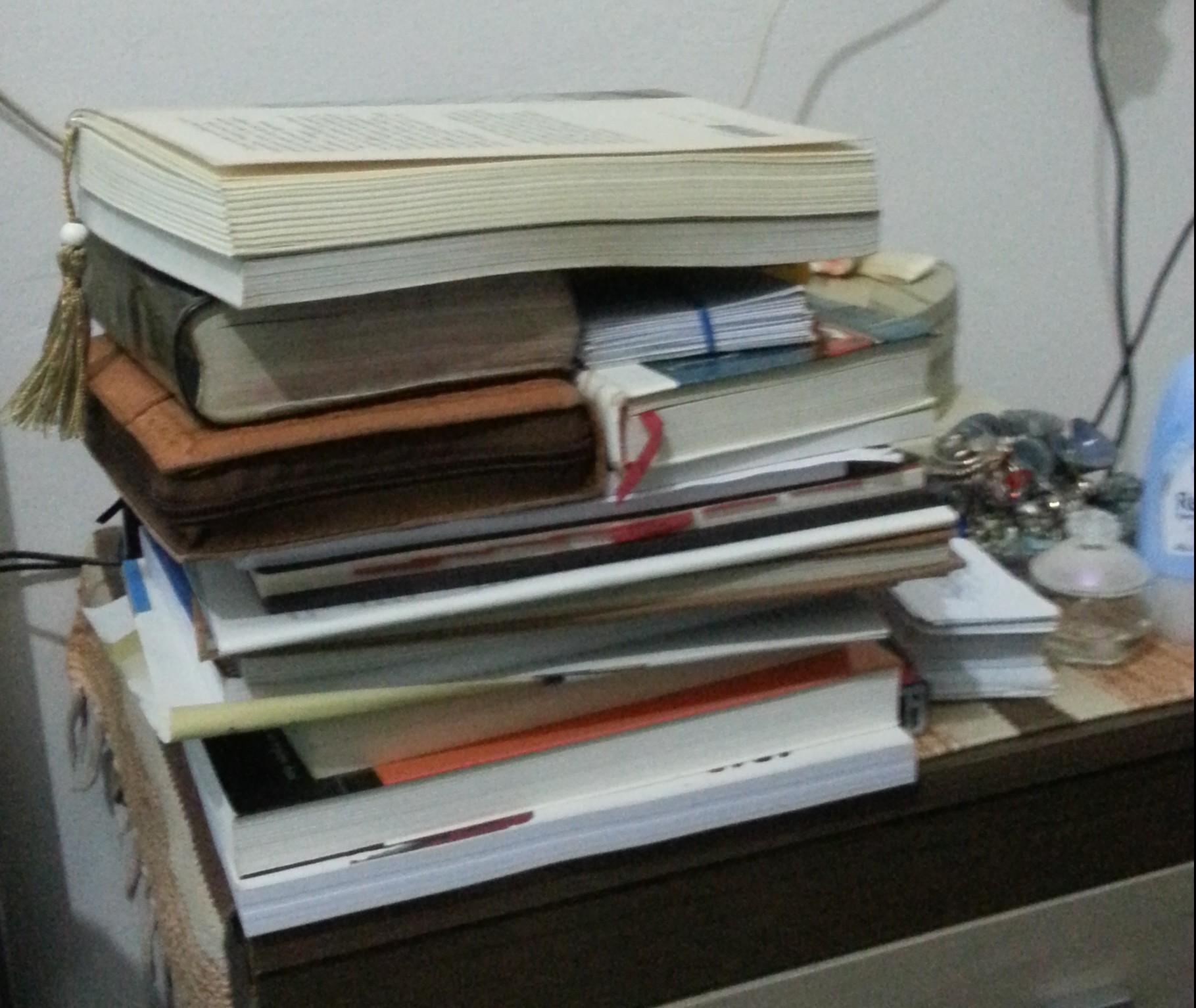Livres en voyage, de Gülsen Yildirim